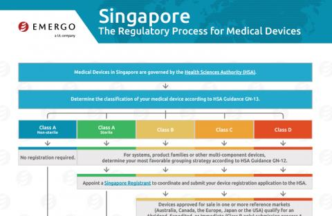 Download the Chart on the Medical Device Approval Process in Singapore