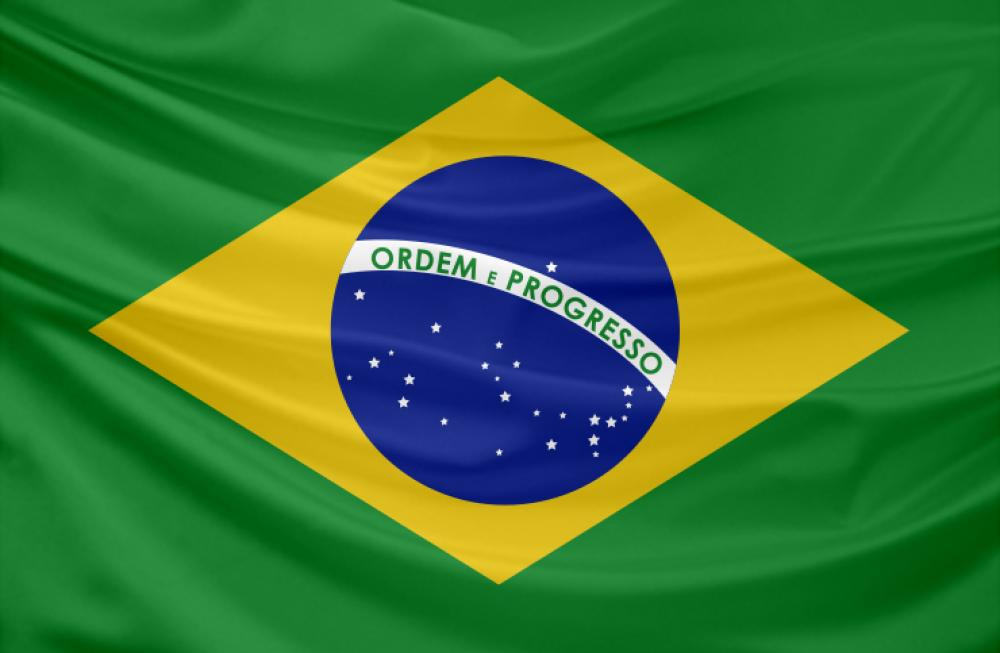 Learn about basic demographic and healthcare market data on Brazil