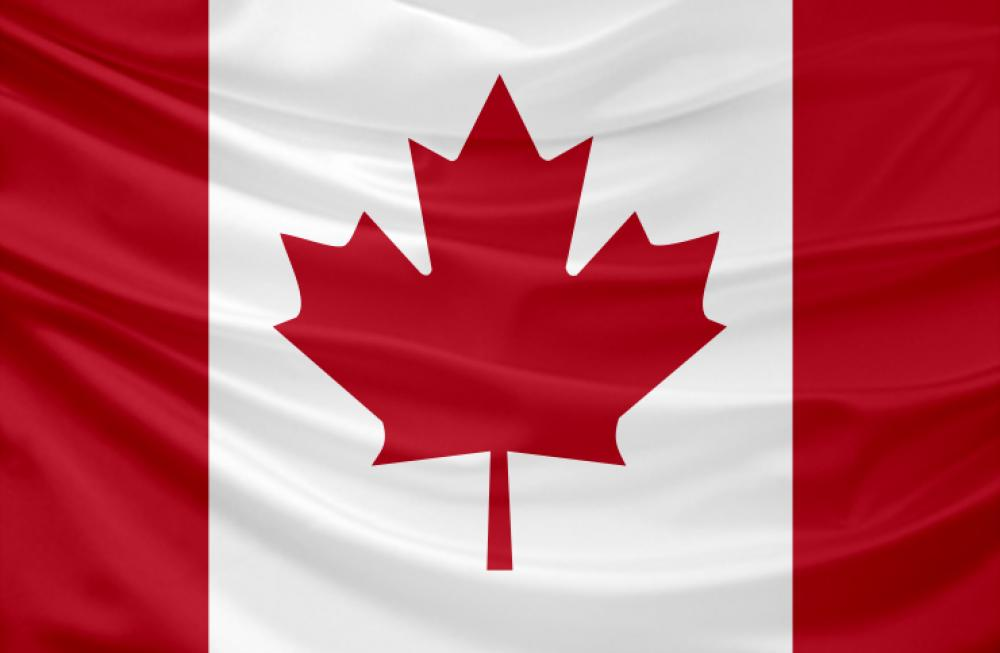 Learn about basic demographic and healthcare market data on Canada