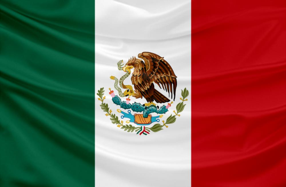Learn about basic demographic and healthcare market data on Mexico