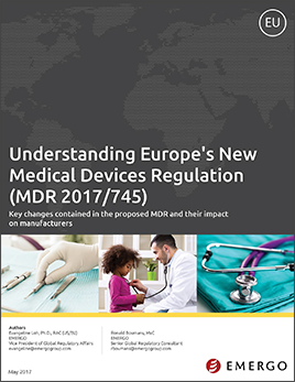 Download our Whitepaper - Understanding Europe's New Medical Devices Regulation